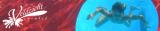 Zwembad Veldzicht