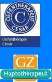 Oefentherapie Cesar & Haptotherapie Geldermalsen